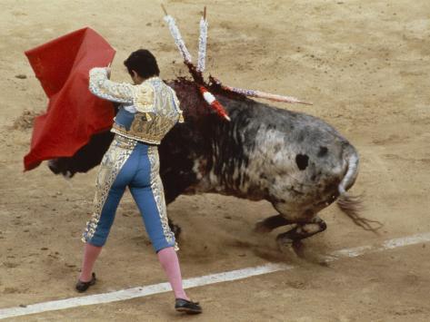 Bullfighting, Plaza de Toros, Ronda, Andalusia, Spain Photographic Print