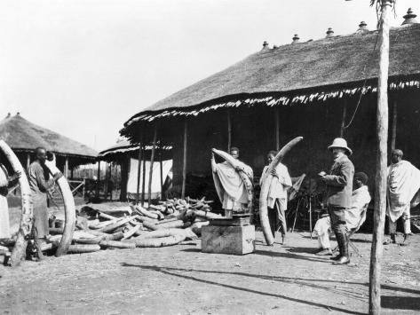 Ivory Warehouses in Addis Abeba, Ethiopia, c.1900 Stampa fotografica