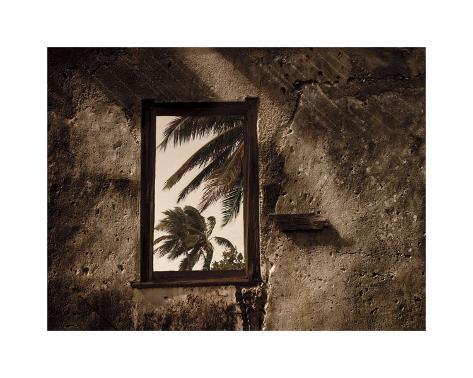 Palm View II Giclee Print