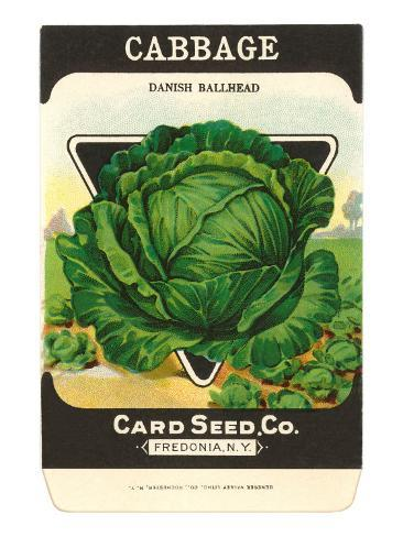 Cabbage Seed Packet Taidevedos