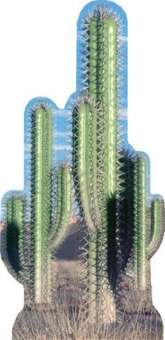 Cactus Group Cardboard Cutouts