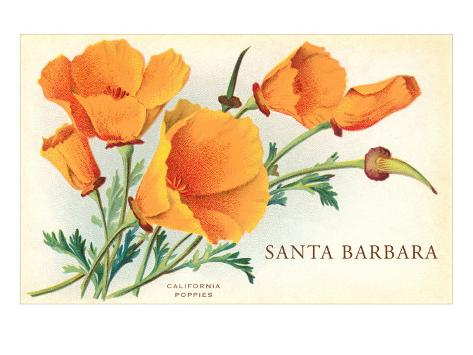 California Poppy, Santa Barbara, California Art Print