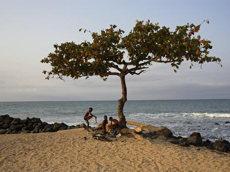 Acacia Tree on the Edge of the City of Sao Tomé, Where Young People Go to Bathe Photographic Print