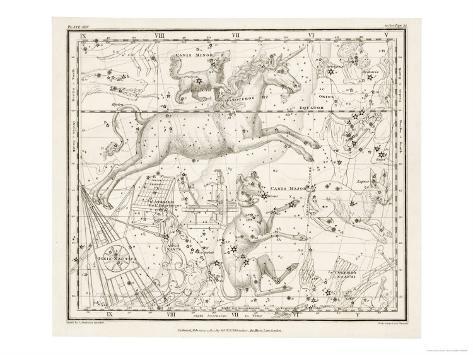 Canis Major (Dog) and Lepus (Hare) Constellation Impressão giclée