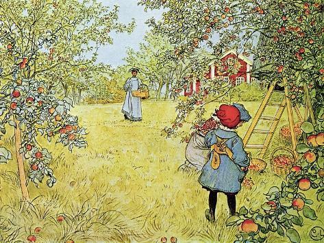 The Apple Harvest Giclee Print