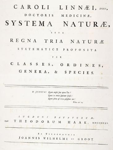 Title Page from 'Systema Naturae', 1735 Giclee Print