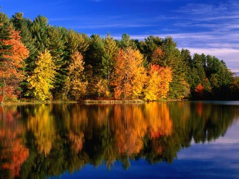 Autumn Trees in New Hampshire, New Hampshire, USA Photographic Print