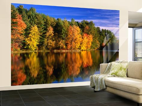 Autumn Trees in New Hampshire, New Hampshire, USA Wall Mural – Large