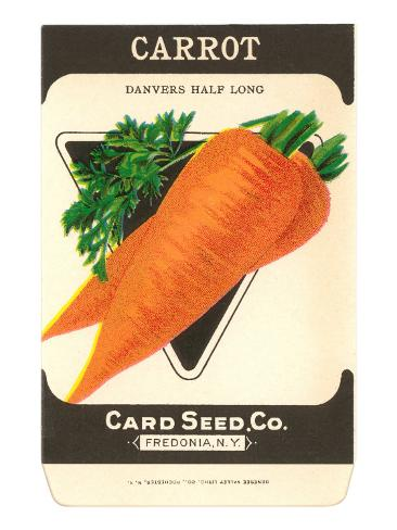 Carrot Seed Packet Taidevedos