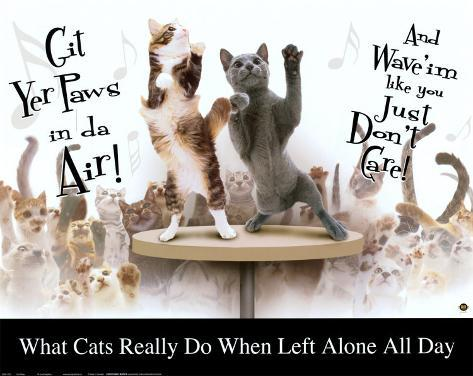 Cat Party Poster