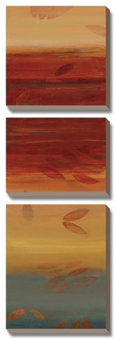 Sun Rays II Canvas Art Set