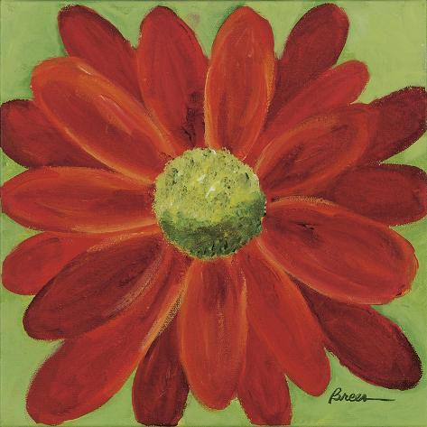 Red Daisy Giclee Print