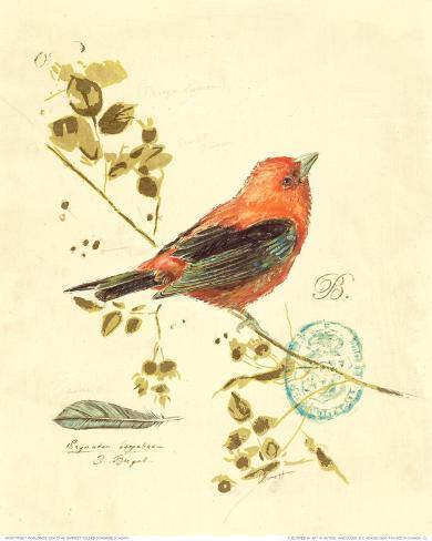 Gilded Songbird III Art Print