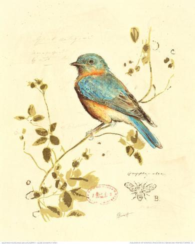 Gilded Songbird IV Art Print