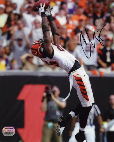 Chad Johnson Cincinnati Bengals -Backward Catch Autographed Photo (Hand Signed Collectable) Photo