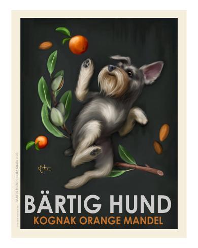Bartig Hund - Schnauzer Art Print