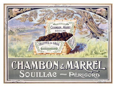Chambon Marrel Olive Growers Giclée-vedos