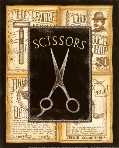 Grooming Scissors Art Print