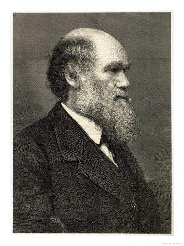 Charles Darwin Naturalist Gicléetryck