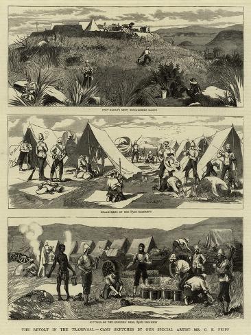 the revolt of lyssa Ana lyssa (analyssa cabaltera rose) - analyssarose analyssa benedict - revolt society - forever 21 - california apparel mart - long beach, california.