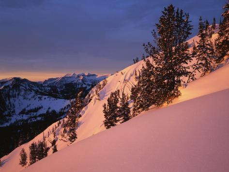 Winter Sunrise, Uinta-Wasatch-Cache National Forest, Utah, USA Photographic Print