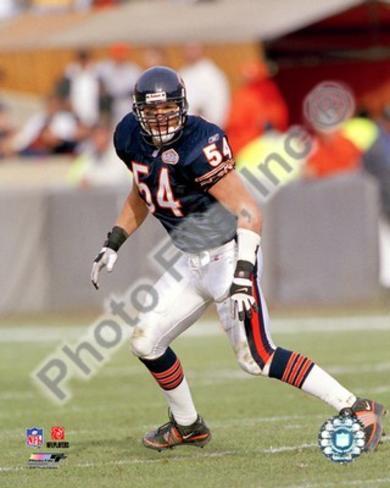 Chicago Bears - Brian Urlacher Photo Photo