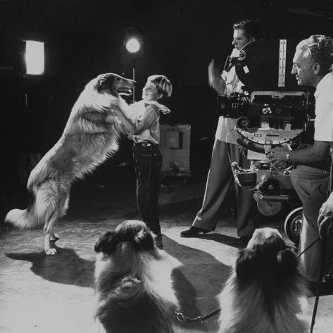 Child Actor Tommy Ruddick, Acting on TV Program with Lassie Premium Photographic Print
