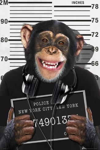 Chimp-Mugshot Poster