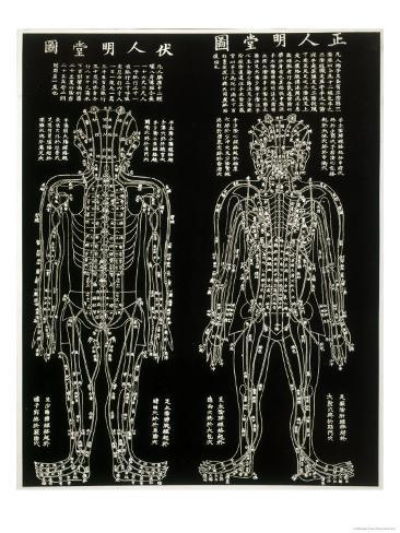 Chinese Acupuncture Chart Showing the Crucial Locations on the Body Giclee Print