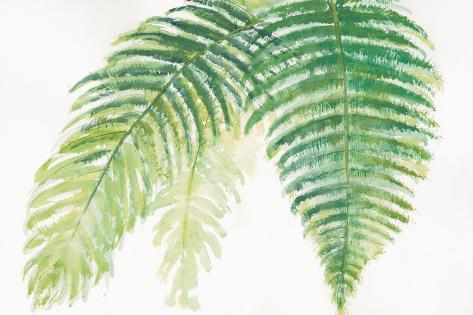 Ferns III Square Art Print