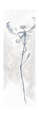 Solitary Dogwood IV Gray Art Print