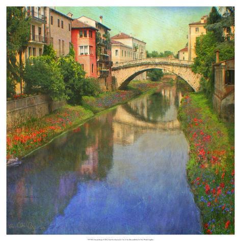 Stream Bridge Art Print