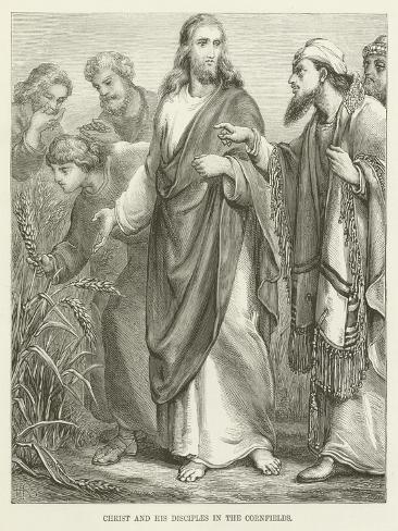 Christ and His Disciples in the Cornfields Lámina giclée