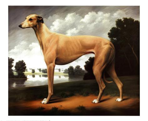 Greyhound in a Parkland Landscape Art Print