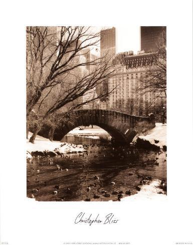 Central Park Bridge IV Art Print