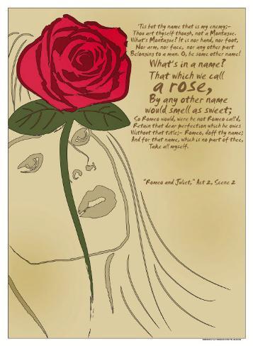 Romeo and Juliet: A Rose Art Print