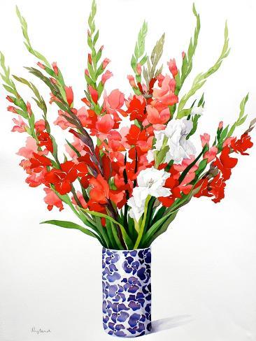 Red and White Gladioli Giclee Print