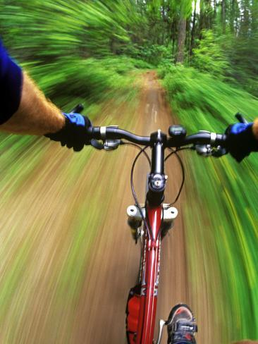 Mountain Bike Trail Riding Photographic Print