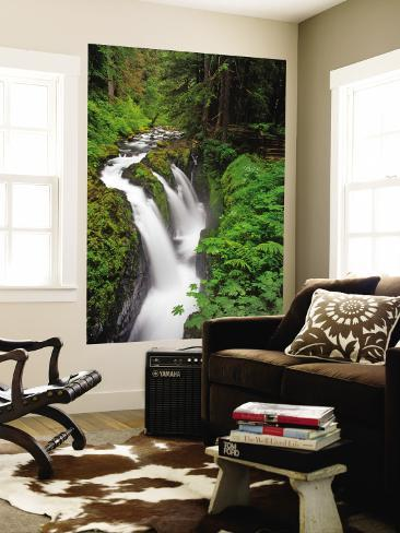 Sol Duc Falls in Olympic National Park, Washington, USA Wall Mural