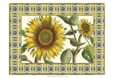 Classical Sunflower I Art Print