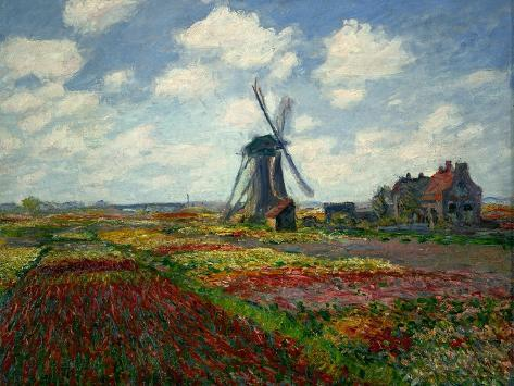 A Field of Tulips in Holland, 1886 Giclee Print