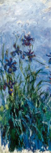 Iris Mauve (detail) Stretched Canvas Print