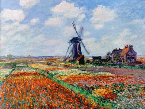 Monet: Tulip Fields, 1886 Giclee Print