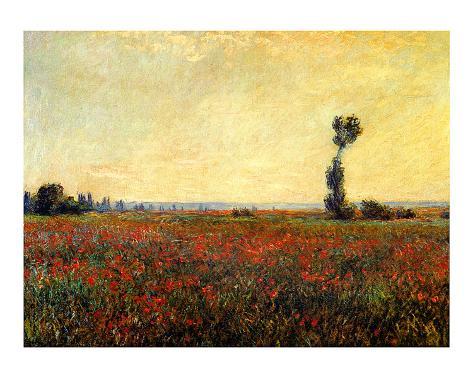Poppy Landscape Giclee Print