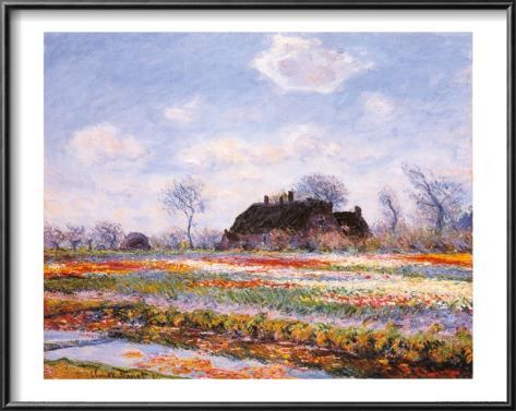 Tulip Fields at Sasenheim Framed Art Print