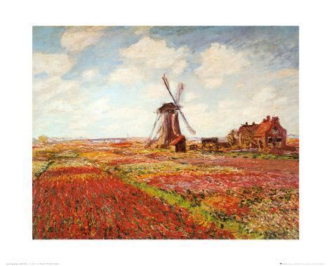 Tulip Fields with the Rijnsburg Windmill Art Print