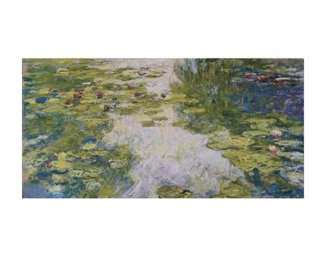 Water Lilies, c. 1917-19 Framed Art Print