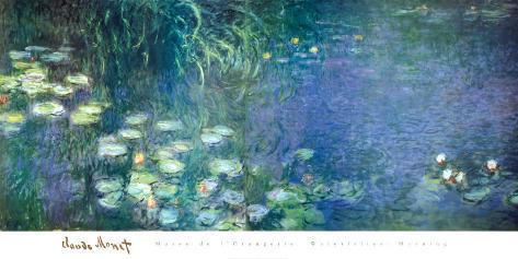 Water Lilies Morning Art Print