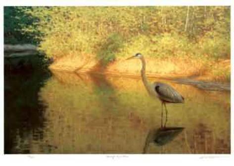 Spring Reflections Collectable Print
