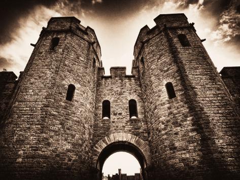 Cardiff Castle 3 Photographic Print